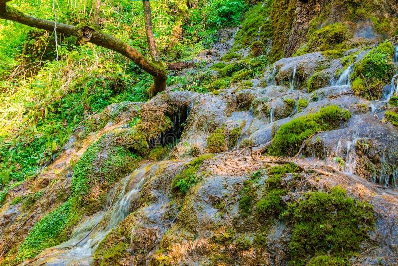 Waterval in park Berendeyevo Tsarstvo, Sotchi, Rusland royalty-vrije stock fotografie