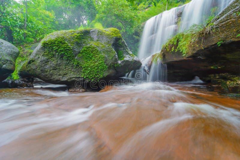 Waterval in Regenwoud royalty-vrije stock afbeelding