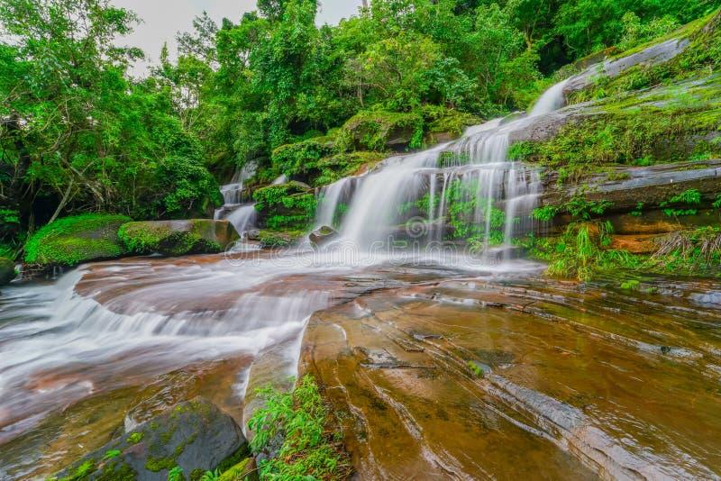 Waterval in Regenwoud stock foto