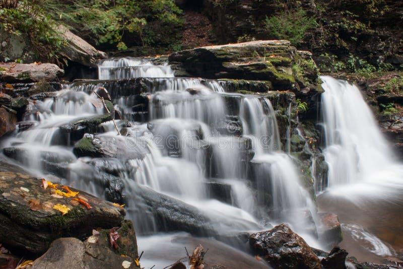 Waterval in Ricketts Glen State Park in de Herfst met mooie bladeren in voorgrond stock afbeelding