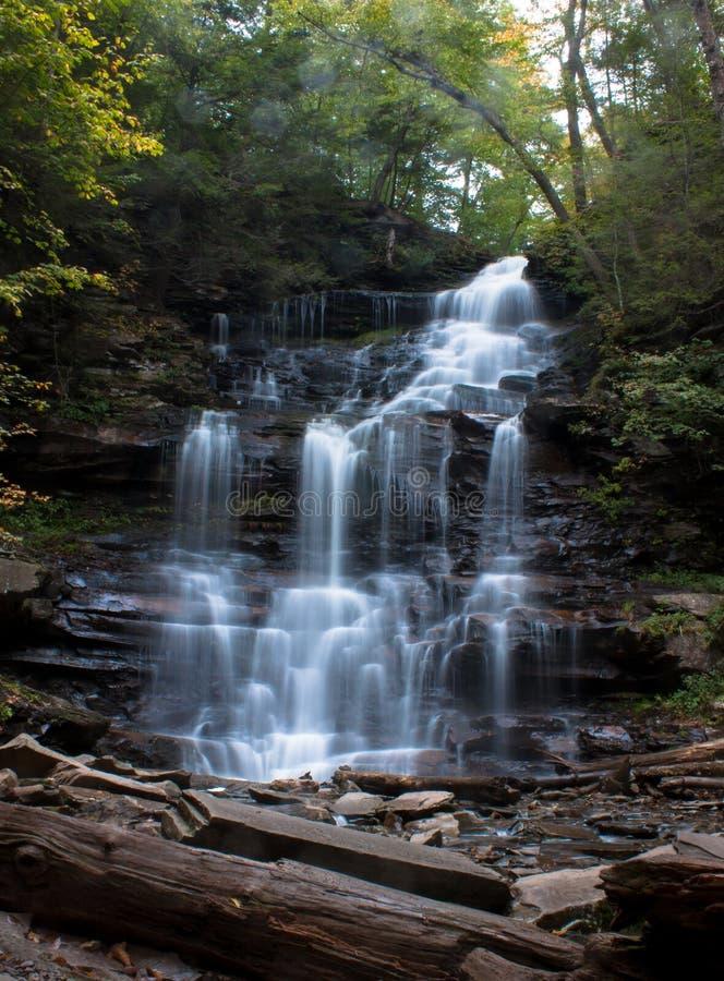 Waterval in Ricketts Glen State Park in de Herfst met prominente rotsen in voorgrond stock foto's