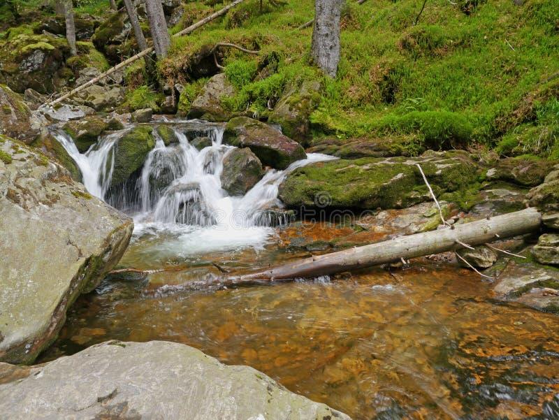 Waterval Riesloch, bebost rotsmassief in Bodenmais stock foto