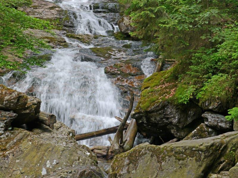 Waterval Riesloch, massief beboste rotsen royalty-vrije stock afbeeldingen