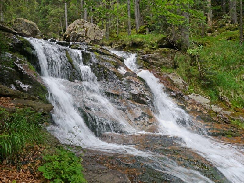 Waterval Riesloch, massief beboste rotsen royalty-vrije stock foto's