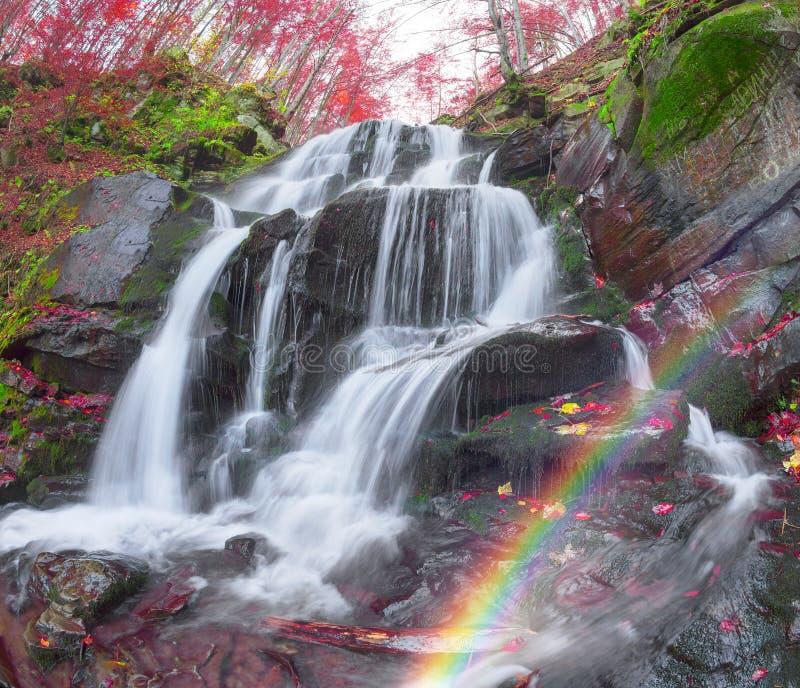 Waterval Shepit Transcarpathië royalty-vrije stock afbeelding