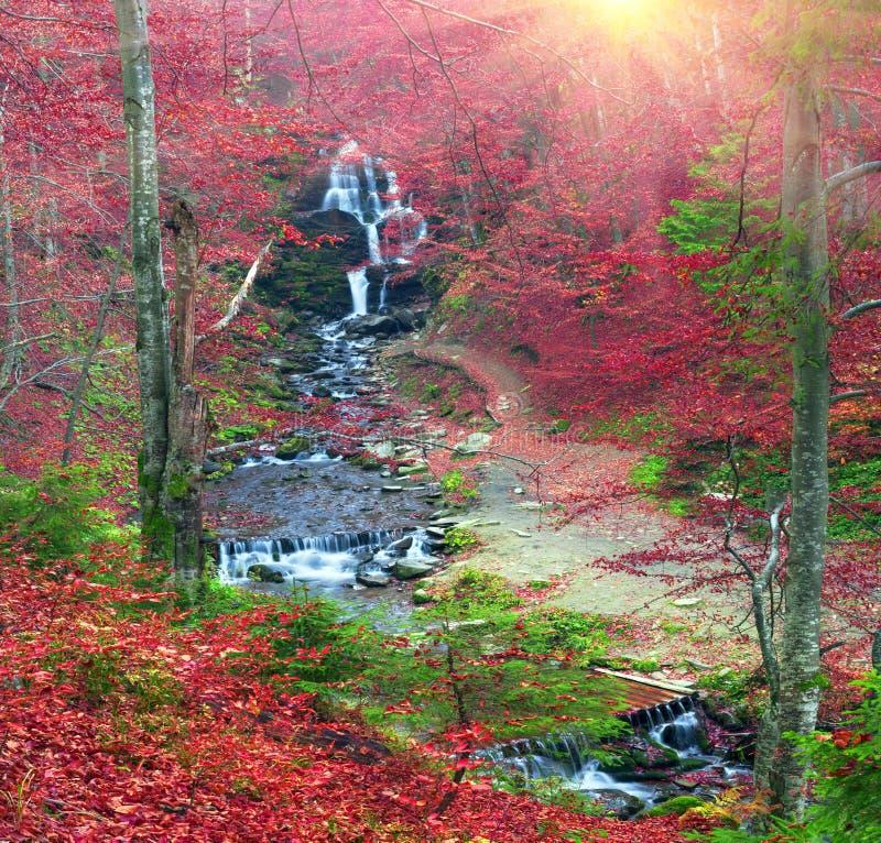 Waterval Shepit Transcarpathië stock afbeelding