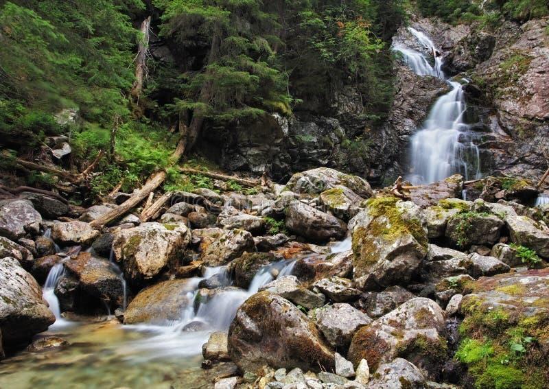 Waterval in Tatras royalty-vrije stock fotografie