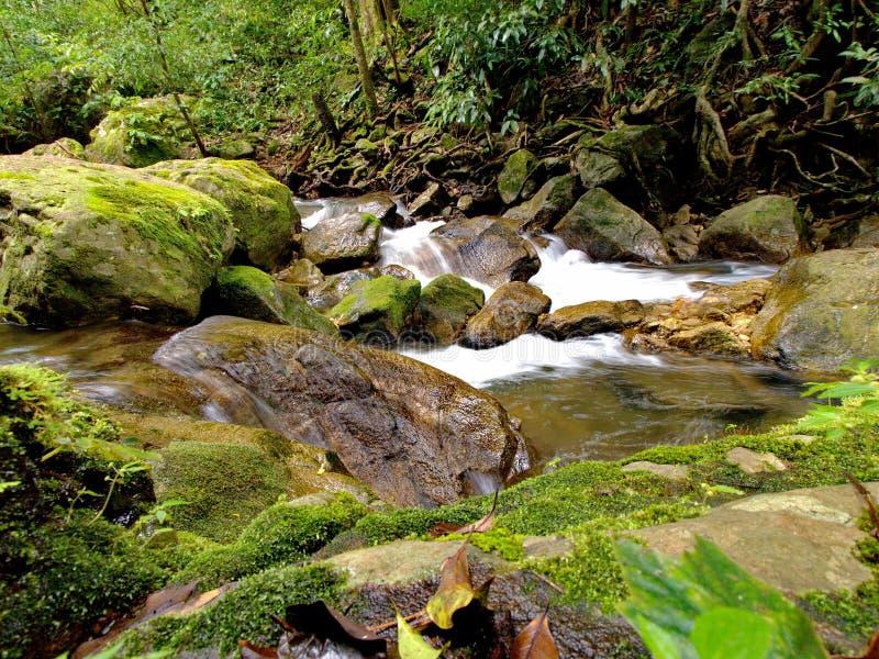 Waterval in Thailand royalty-vrije stock foto's