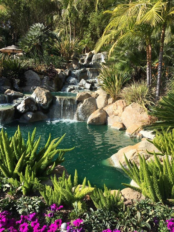 Waterval in tropische tuin stock fotografie