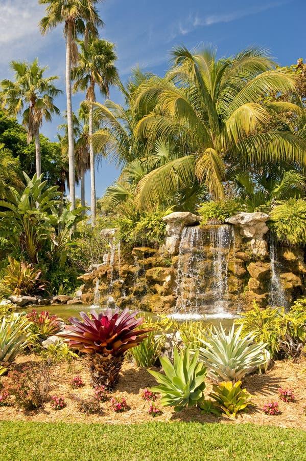 Waterval in tropische tuin royalty-vrije stock fotografie