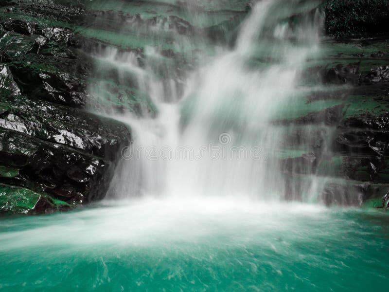 Waterval van Zmeykovsky in het bergbos Sochi stock afbeeldingen
