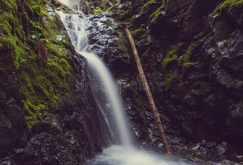 Waterval in Vancouver royalty-vrije stock afbeeldingen
