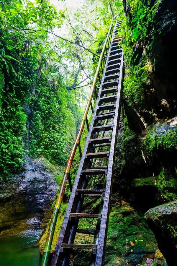 Waterval verborgen in de tropische jungle Bogor, West-Java, Indonesië royalty-vrije stock foto's