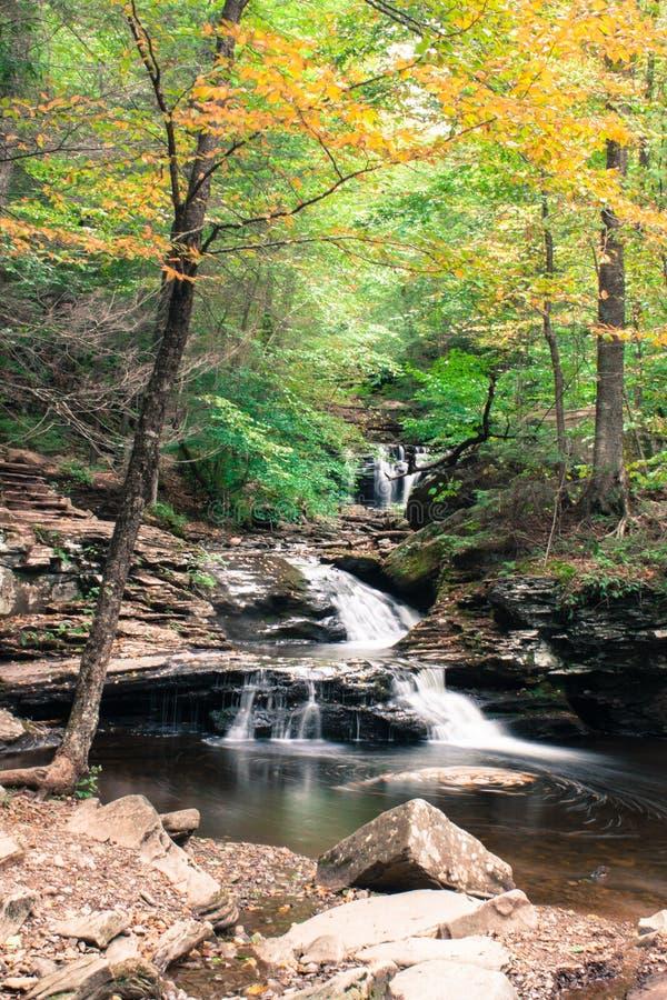 Waterval waar de Wateren in Ricketts Glen State Park in kernachtig de Herfstweer samenkomen royalty-vrije stock foto's