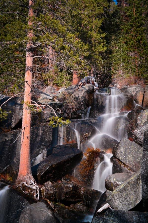 Waterval in Yosemite-Park royalty-vrije stock afbeeldingen