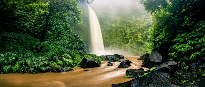 Watervalcascade in tropische wildernis op de achtergrond groene boom bosaard en de berg die wordt verborgen royalty-vrije stock foto's