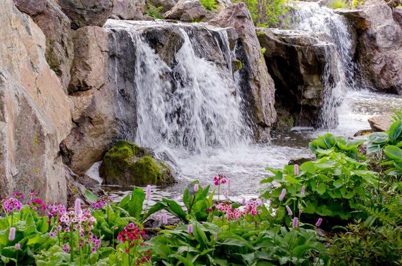 Watervallen bij de Botanische Tuinen van Chicago stock foto