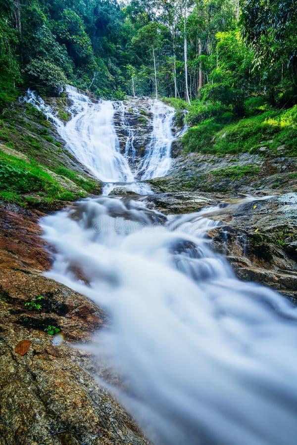 Watervallen in Cameron Highlands, Maleisië stock foto's