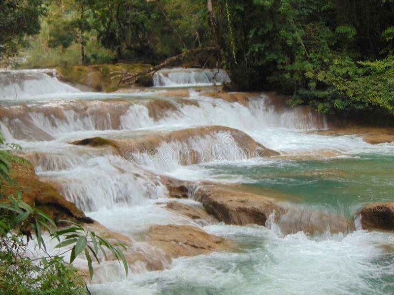 Watervallen in Chiapas royalty-vrije stock fotografie