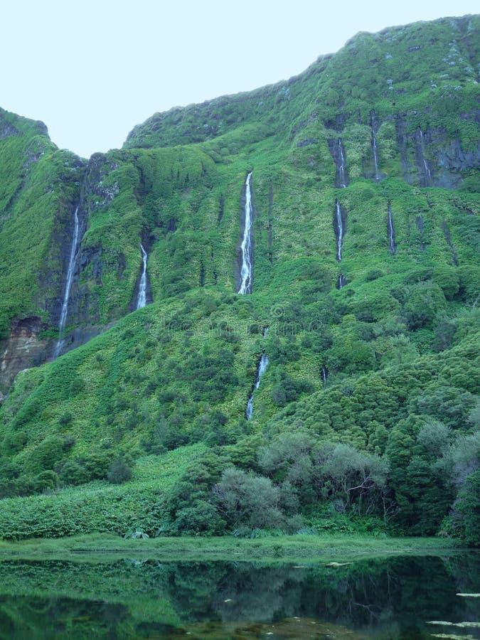 Watervallen in Eiland Flores (de Azoren) royalty-vrije stock fotografie
