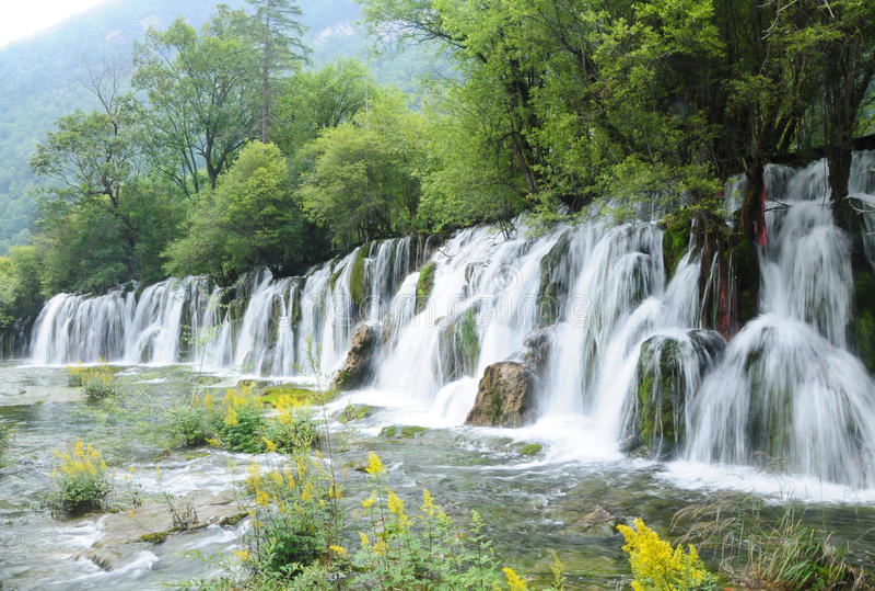Watervallen en bloem royalty-vrije stock afbeeldingen