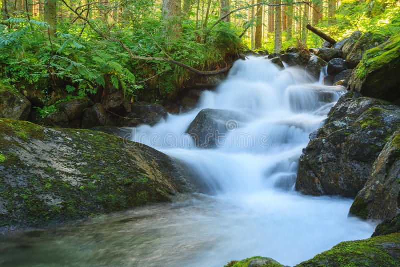 Watervallen in het bos royalty-vrije stock foto's