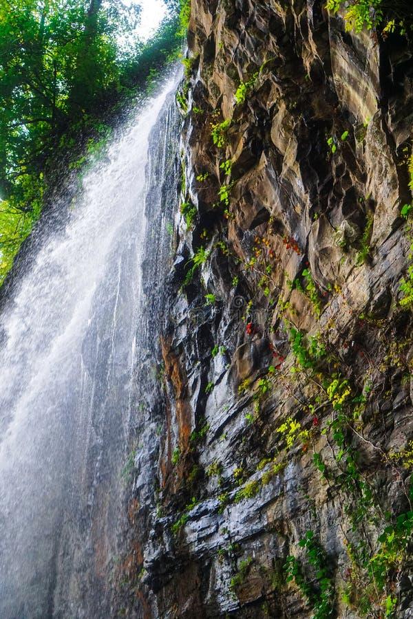 Watervalreus Oostelijk Abchazië Dichtbij de stad van Tkvarcheli Akarmaradistrict royalty-vrije stock foto