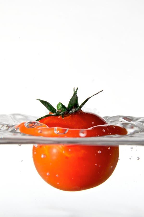 Watervegetable fotografia stock libera da diritti