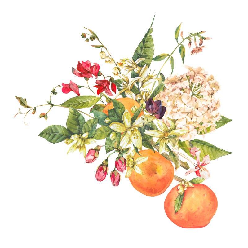 Waterverf bloeiend oranje takje met bloemen royalty-vrije illustratie