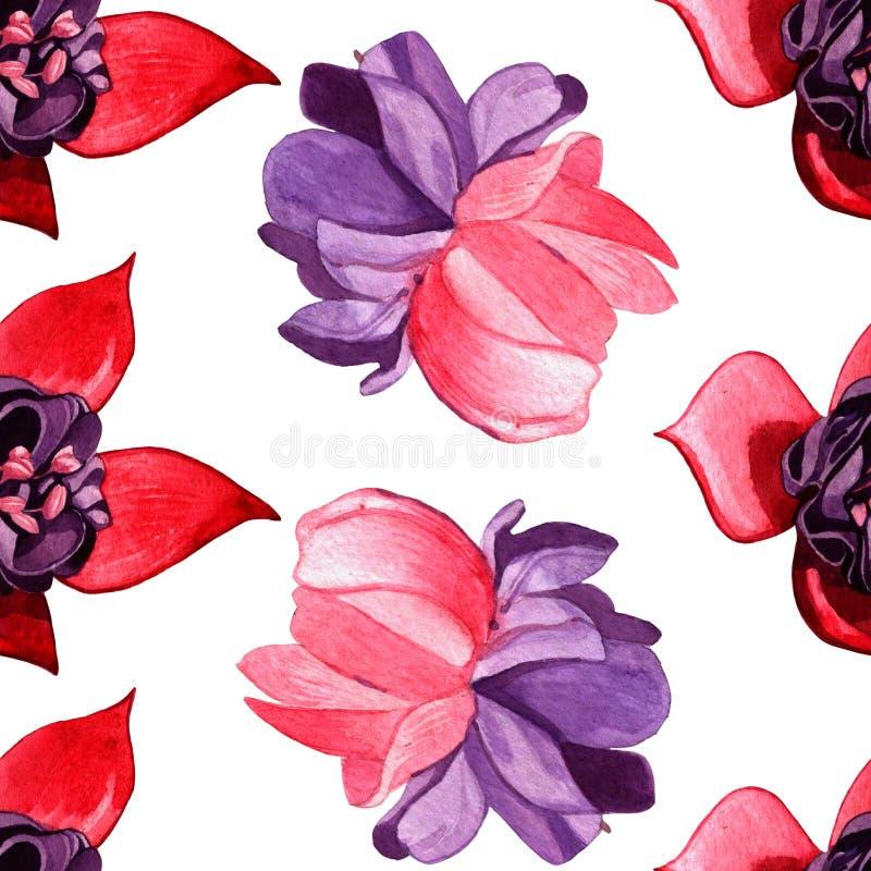 Waterverf bloemen naadloos patroon fuchsiakleurig bloem en installaties op witte achtergrond stock illustratie