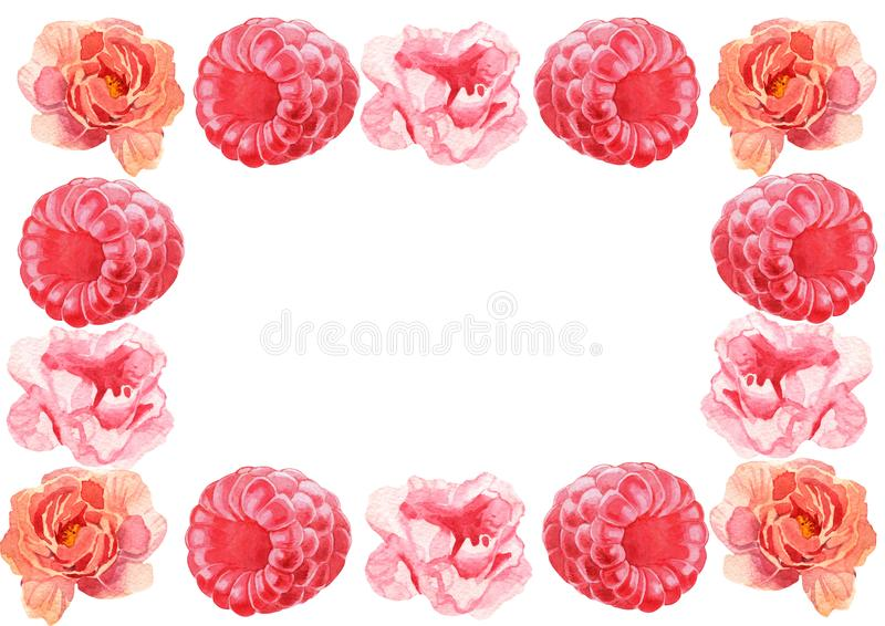 Waterverf bloemenachtergrond Bloemen en bessenkader Roze en purpere de lenteillustratie stock illustratie