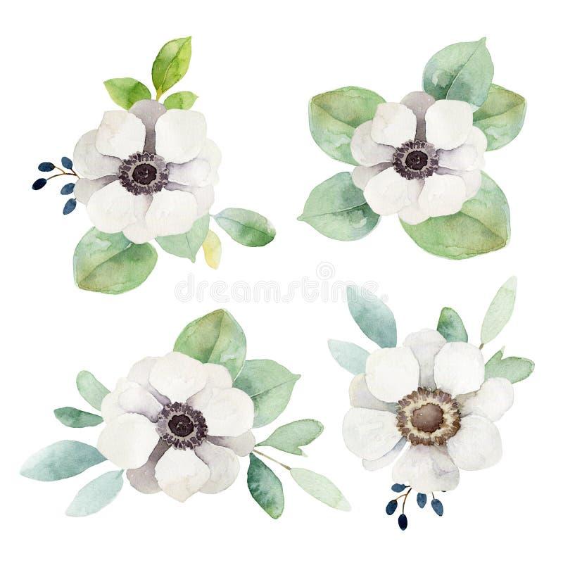 Waterverf bloemenboutonnieres met anemonen en eucalyptusbladeren stock illustratie