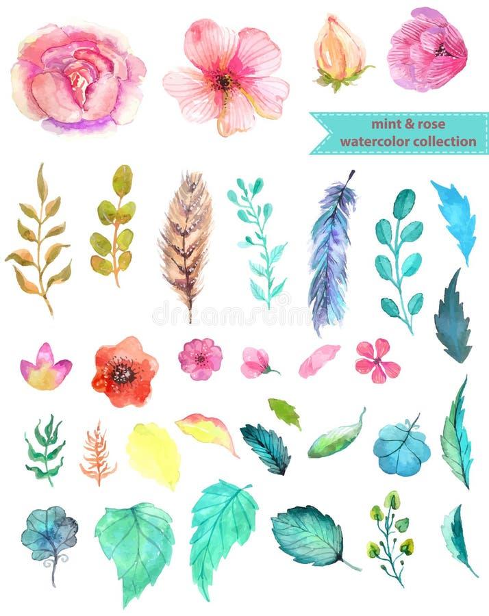 Waterverf bloemeninzameling royalty-vrije illustratie