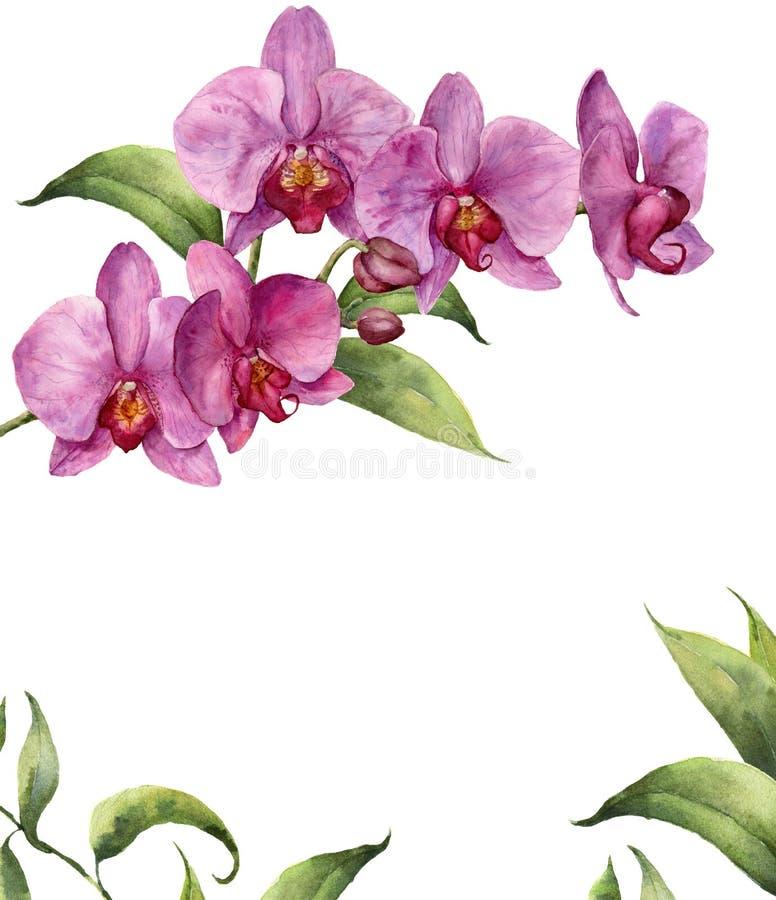 Waterverf bloemenkaart met orchideeën en bladeren De hand schilderde bloemen botanische die illustratie op witte achtergrond word royalty-vrije illustratie