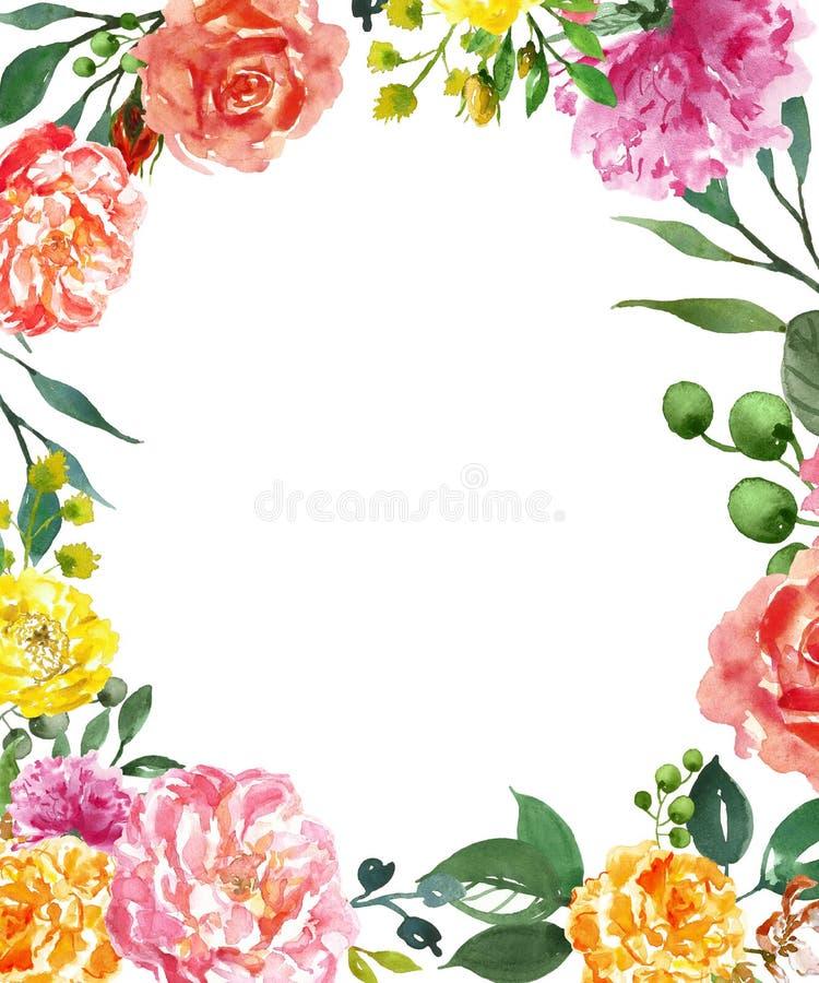 Waterverf bloemensamenstelling met ruimte voor tekst Roze, rode en gele hand geschilderde pioenbloemen met groene geïsoleerde bla stock illustratie