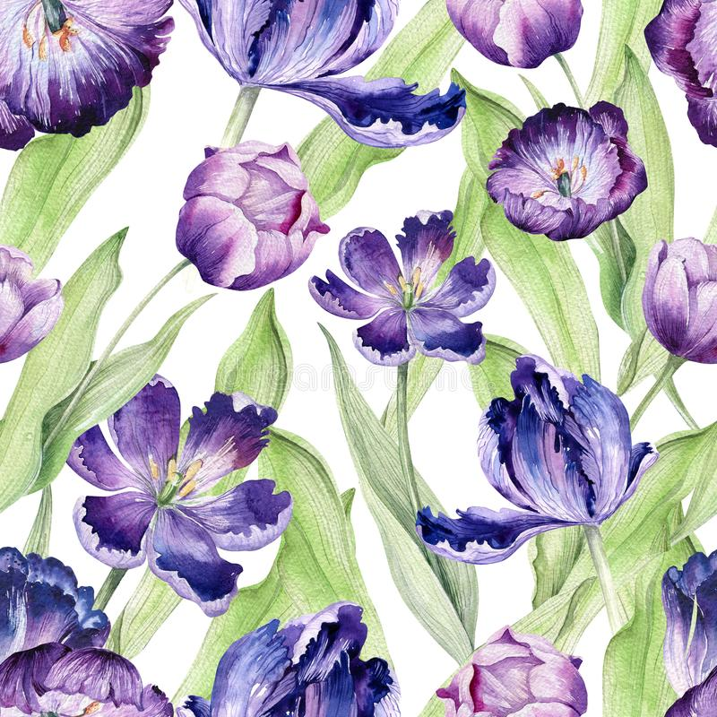 Waterverf bloementulp Naadloze kleurrijk vector illustratie