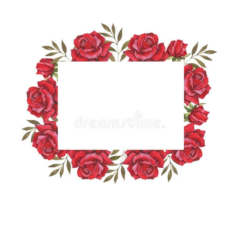 Waterverf botanische illustratie met rode rozen Huwelijkskaders, de kaart van de huwelijksuitnodiging Felicitatie kaart royalty-vrije illustratie