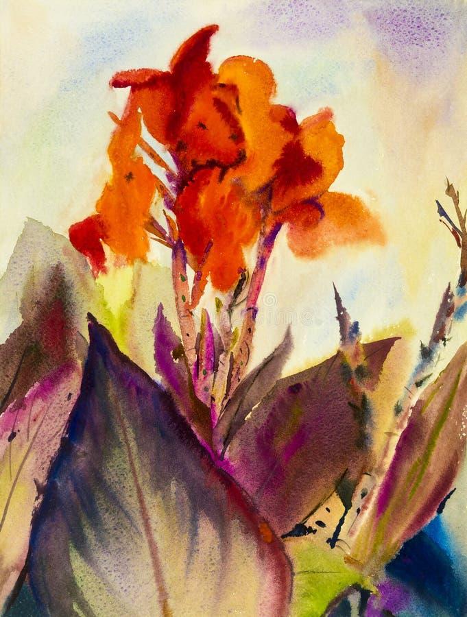 Waterverf die originele landschaps oranje kleur van Canna-leliebloem schilderen stock illustratie