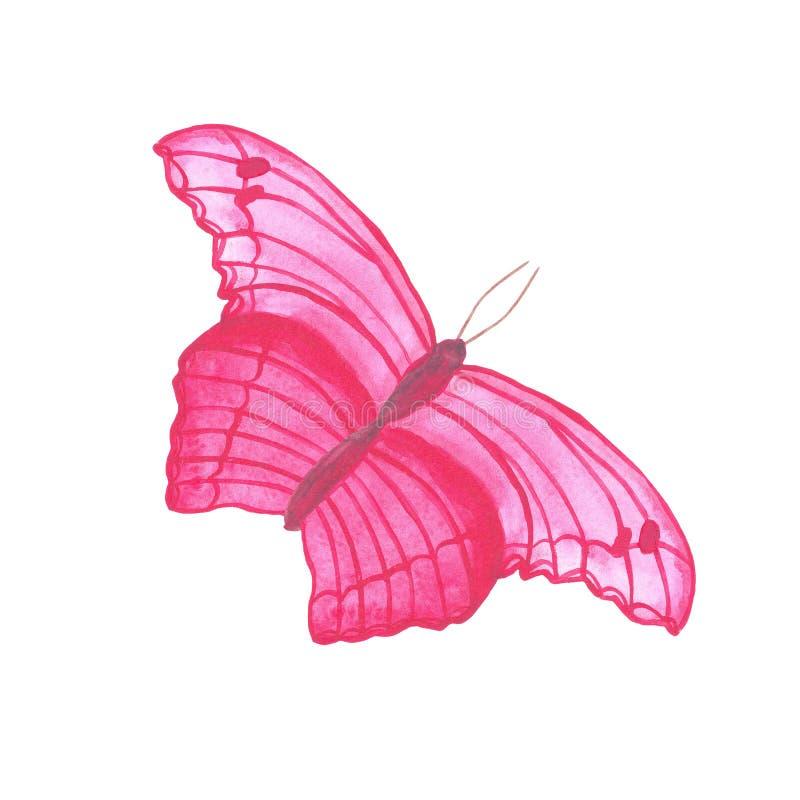 Waterverf die roze de zomer tropische exotisch vliegen van het vlinderinsect stock illustratie