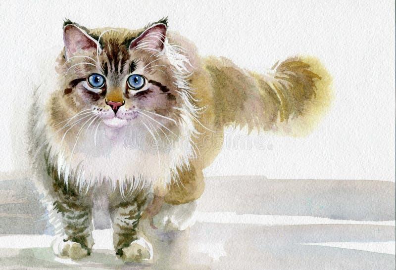 Waterverf Dierlijke Inzameling: Kat stock fotografie