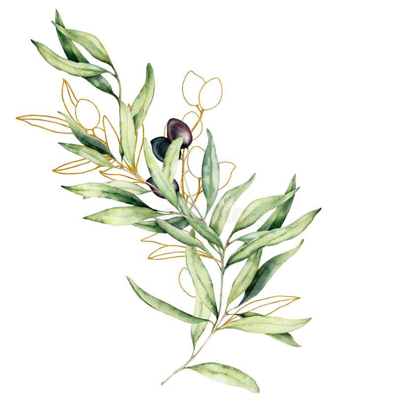 Waterverf en gouden schetskaart met olijf, bladeren en tak De hand schilderde bloemendieillustratie op wit wordt ge?soleerd royalty-vrije illustratie