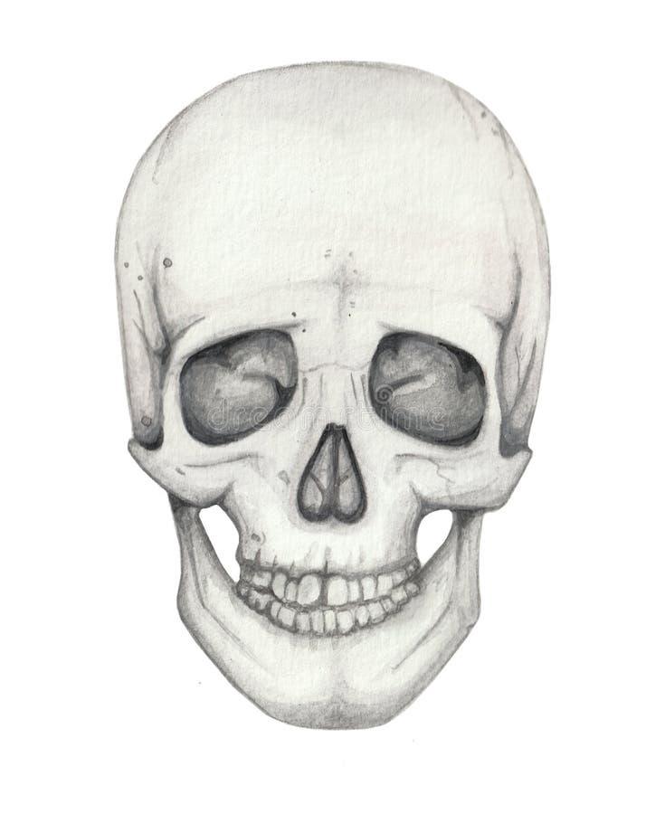 Waterverf gotische illustratie met menselijke getrokken schedelhand stock illustratie