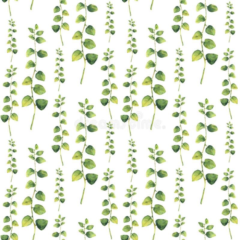 Waterverf groen bloemen naadloos patroon met takjekruiden royalty-vrije illustratie