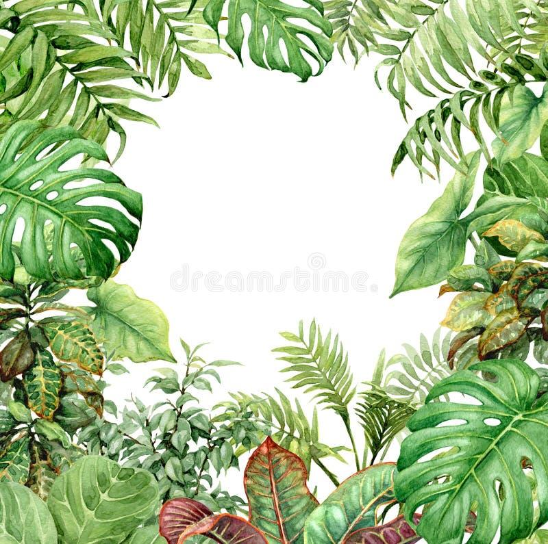 Waterverf groene achtergrond met tropische installaties
