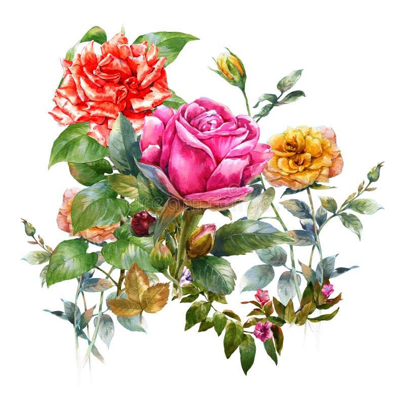 Waterverf het schilderen de bladeren en de bloem, namen, op witte achtergrond toe vector illustratie