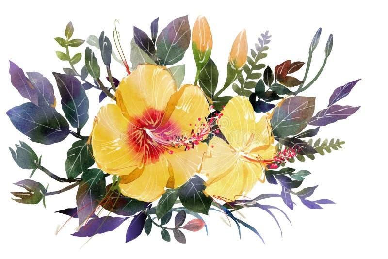 Waterverf het schilderen gele de Hibiscusplaats van de boekettenbloem stock illustratie