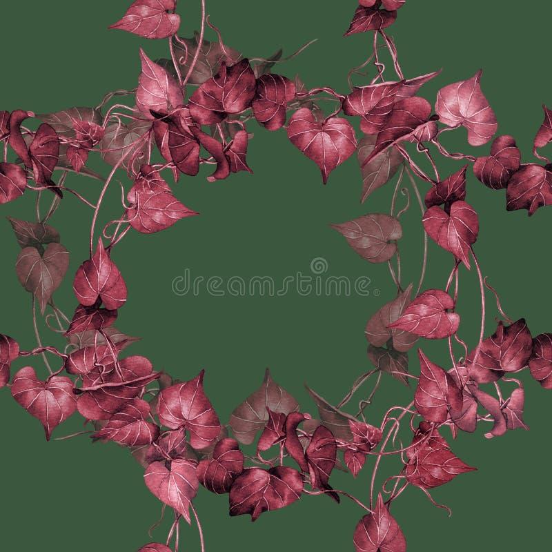Waterverf het schilderen het rood, doorboort het kleurrijke naadloze patroon van de bladerenklimop op donkergroene achtergrond Bo royalty-vrije illustratie