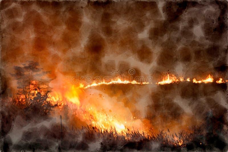 Waterverf het Schilderen van Brand Brandende Grassen en Bomen op Nacht royalty-vrije stock afbeeldingen