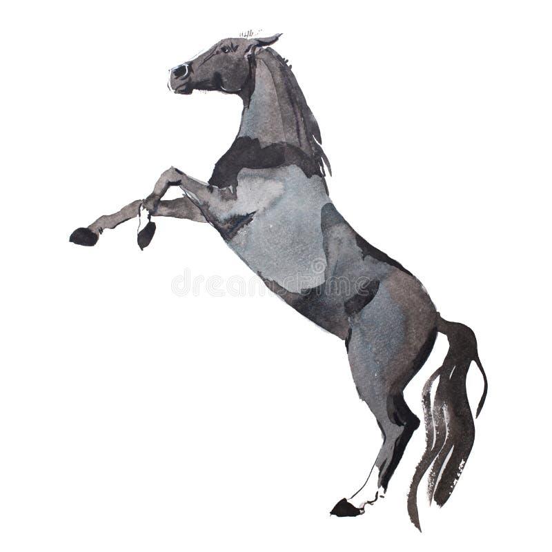 Waterverf het schilderen van omhoog het grootbrengen van paard, bruin mustang die op benenaquarelle tekening krijgen stock afbeeldingen