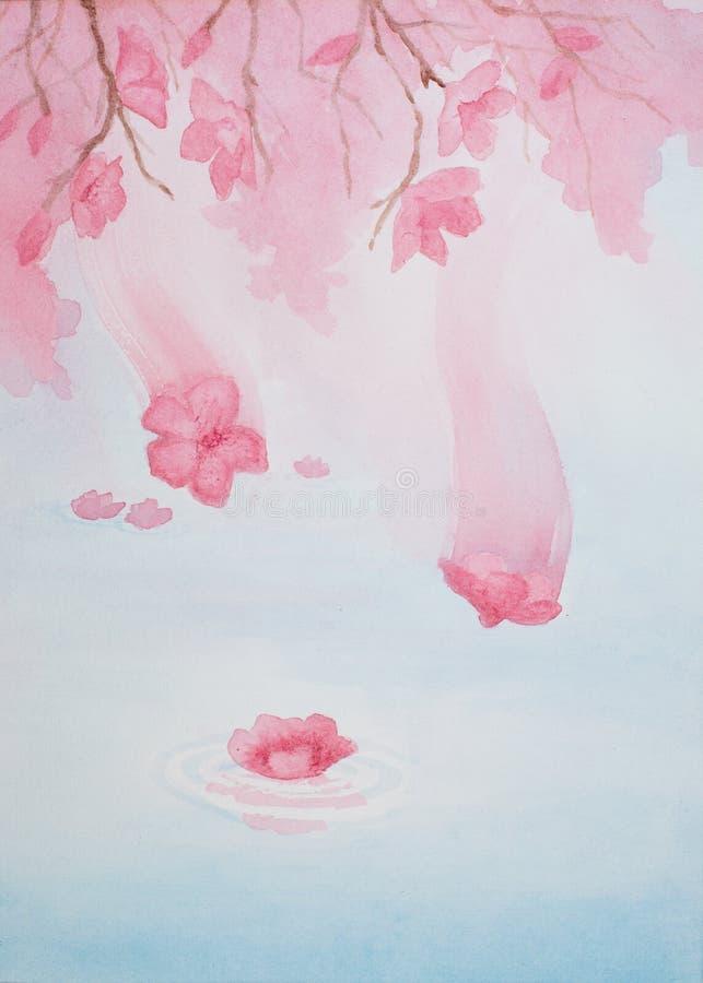 Waterverf het schilderen van roze kers komt vallend van de boom en nog landend op water tot bloei stock afbeeldingen
